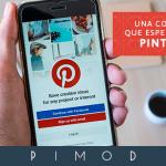 18-08_Pimod_WEB